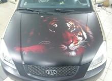 Черный матовый тигр на капот kia rio! Винилография на капот!