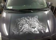 Тигр на капот Tayota Yaris